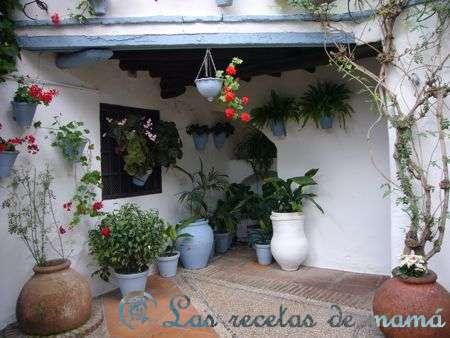 patios-de-cordoba-068wtmk