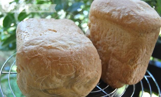 Pan con harina de maíz