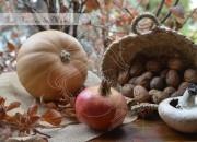Recetas de otoño. Video receta